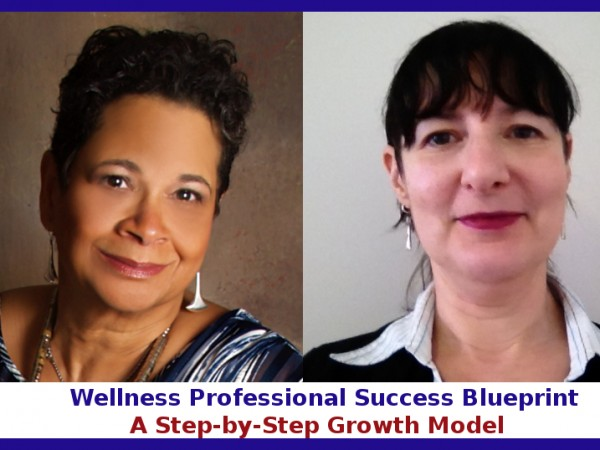 WellnessProfessionalSuccessBlueprint